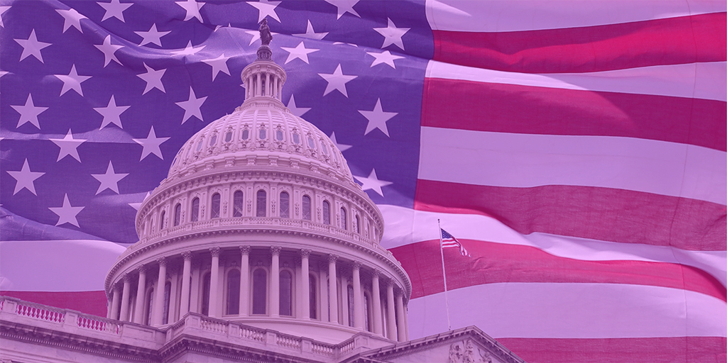 The Purple Haze: Election Implications for markets and the Economy